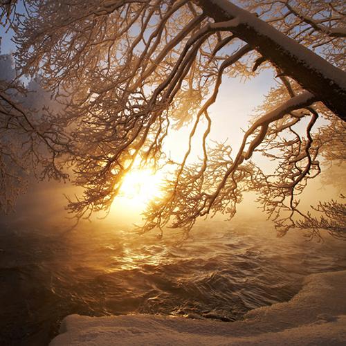 talvijoki